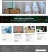 saltechips-new-website